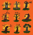 halloween tree scary character treetops of vector image
