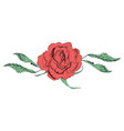in form flowers roses vector image