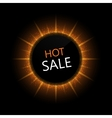 modern hot sale banner vector image