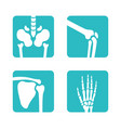 set of orthopedic and skeleton bones symbols vector image