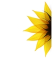 Sunflower part vector image