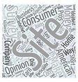 American Consumer Opinion Word Cloud Concept vector image vector image