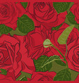 beautiful red rose seamless pattern botanical vector image vector image