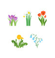 cartoon color garden flowers icons set vector image