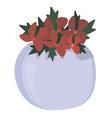 christmas composition christmas poinsettias vector image vector image