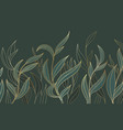 elegance botanican tropical golden line art vector image