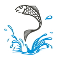 Fish2 resize vector image vector image