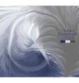 Macro feathers White grey dark blue vector image vector image