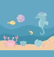 seahorse fishes crab shrimp sand life cartoon vector image