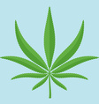 The sheet of hemp in flat style vector image