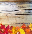 Autumn Border With Wood vector image vector image