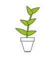 flat line plant design vector image