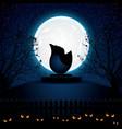 halloween evening vector image