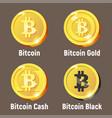 set of bitcoin logo coins vector image vector image