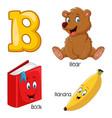 b alphabet vector image