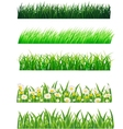 grass collection vector image vector image
