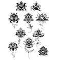 Outline paisley flowers with lush blooms vector image