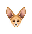 portrait of cute fennec fox pixel art animal vector image