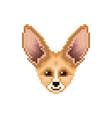 portrait of cute fennec fox pixel art animal vector image vector image