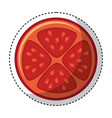 vegetable pizza ingredient icon vector image vector image