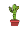 white background with cactus with two branches on vector image vector image