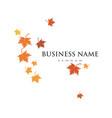 autumn leaf logo template vector image