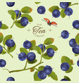 Blueberry pattern full vector image vector image