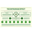 entourage effect horizontal infographic vector image vector image