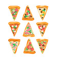 flat set of triangle slices of pizza with vector image