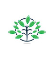 green tree with leaves logo vector image vector image
