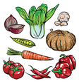 organic vegetables Healthy sketch diet vector image vector image