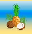 ripe pineapple and coconut vector image