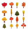 set of autumn trees different types modern trend vector image vector image