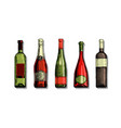 set wine bottle vector image