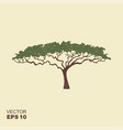 african tree icon acacia tree silhouette icon vector image vector image