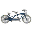 blue tandem bicycle vector image vector image