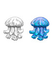 jellyfish hand made ink drawing vector image vector image