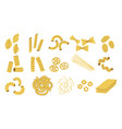 pasta types hand drawn wheat macaroni vector image