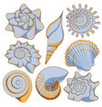 set of colored sea shells vector image vector image
