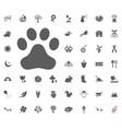 trace icon spring icon set vector image vector image