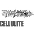 what you need to know about cellulite text word vector image vector image