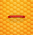 background with honeycombs vector image