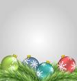 Christmas balls on pine branches vector image