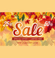 bright banner design with autumn sale vector image
