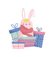 fluffy rabbit adorable gift boxes merry christmas vector image vector image