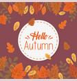 hello autumn banner season design vector image vector image