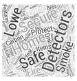 Lowes Home Security System Word Cloud Concept vector image vector image