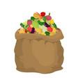 vegetables burlap bag sack of veggies big crop on vector image vector image