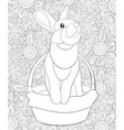 adult coloring bookpage a cute rabbit in a basket vector image vector image