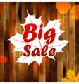 Autumn sale autumn leaves background plus EPS10 vector image vector image